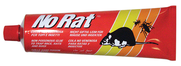 Picture of NO RAT